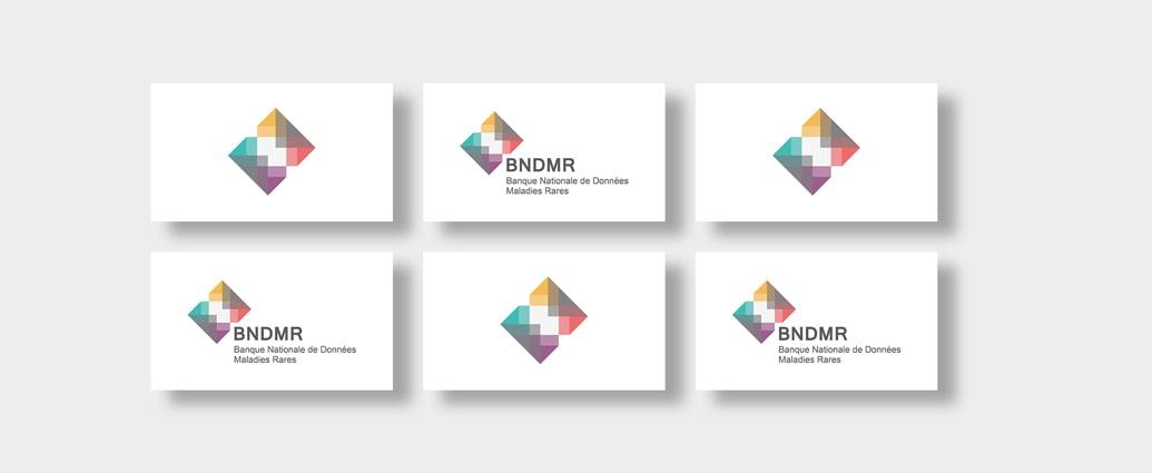Banque Nationale de Données Maladies Rares (BNDMR)