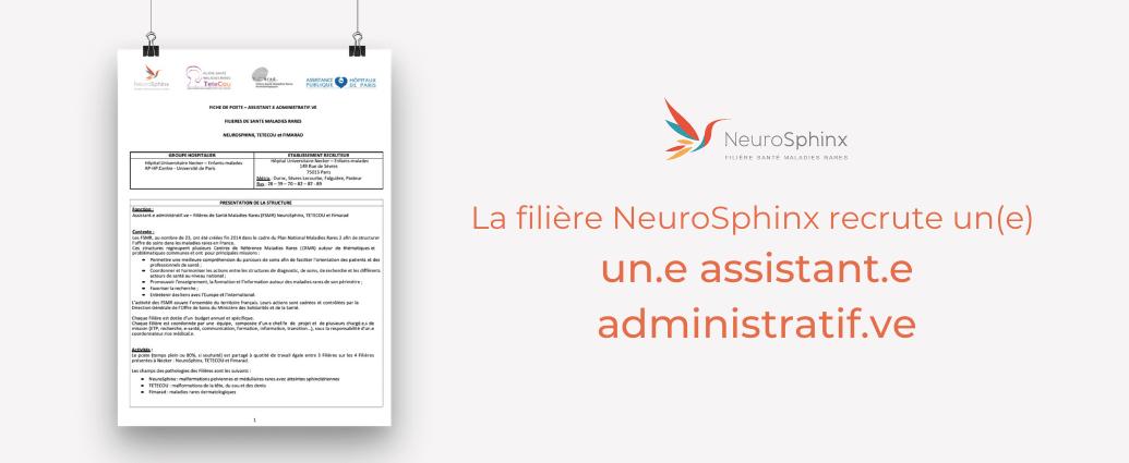 La filière neurosphinx recrute un.e assistant.e administratif.ve